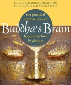 buddha's brain by rick hanson