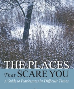 The-Places-That-Scare-You-by-Pema-Chodron